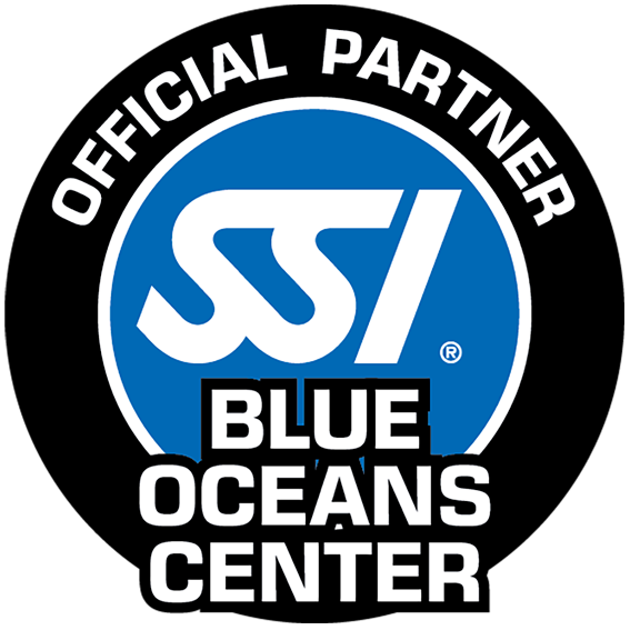 Blue Oceans Center